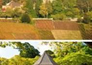 프랑스 샹파뉴 포도원 등 14곳도 새 세계유산 올라