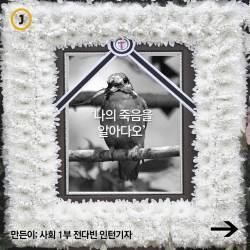 [멀티뉴스] '나의 죽음을 알아다오'