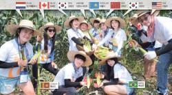 [<!HS>젊어진<!HE> <!HS>수요일<!HE>] 청춘리포트 - 재외동포 청춘이 겪어본 대한민국