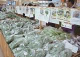[우리농식품사랑캠페인]아시아 대표 <!HS>로컬푸드<!HE> 성공사례가 있는 곳, 전북 완주