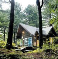 [커버스토리] 편백숲서 산림욕, 솔숲서 데이트 '힐링이 절로'