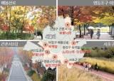 워커힐 <!HS>느티<!HE>나무, 동작 단풍터널 … 다양해진 서울의 가을