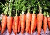 """[우리농식품사랑캠페인] """"건강에 좋다""""는 말 미안할 정도, 당근의 효능"""