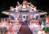 유럽 수선화·벚꽃 활짝, 미국은 초여름 '반팔 크리스마스'