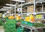 [올해를 빛낸 기업] 농식품 물류센터 개선, 2020년 도매 2조원 목표