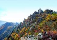 설악산 오색지역, 자연휴양체험지구로 재탄생... 국제 관광거점 육성