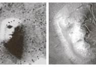 화성에 사람 얼굴이 보인다고? … '파레이돌리아' 현상일 뿐