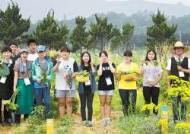 [안전한 일터] 농촌진흥청, 파티션 대신 '바이오 월'…작은 화분 하나가 사무실 활력 38% 올려줍니다