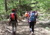 [6월 가볼 만한 곳] 시원한 숲길 걸으니 몸과 마음이 다 즐겁네~