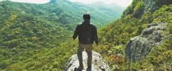 [여기어디?] '곡성' 종구(곽도원)가 외지인 쫓던 숲…고창 천마봉 산행 코스