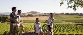 [<!HS>Travel<!HE> <!HS>Gallery<!HE>] 와인을 마시고 자연에 취하다···호주 와이너리 여행