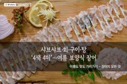 [카드뉴스] 샤브샤브·회·구이·탕 '4색 4미'…여름 보양식 장어