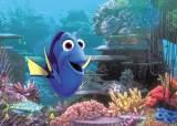 [매거진M] 주말에 뭐 볼래?… 납치당한 물고기 '도리를 찾아서' vs 희망의 울림 '로렐'