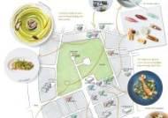 [도산공원길 맛있는 지도] 스타 셰프, 스시 장인이 펼치는 맛의 전쟁