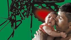 스페인서 유럽 최초 <!HS>소두증<!HE> 신생아…남미 여행 중 <!HS>지카<!HE> 감염