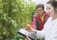 [health&leisure] 모바일로 농작물 재배시설 원격관리 … '스마트팜'확산 가속화