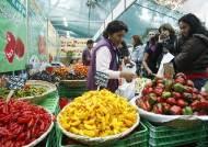 [Festravel] '마추픽추'의 나라 페루? 황홀한 '맛'의 나라 페루!