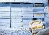 [포토클립] 4000종 유산균 한 곳에 모았다…한국야쿠르트의 '보물창고'