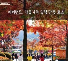 [주말 여행 어디 갈까] 에버랜드, 가을 4色 힐링 단풍 코스