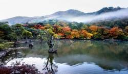 [핫 클립] 국립공원에서 찾은 '올가을 가장 아름다운 단풍길 5곳'
