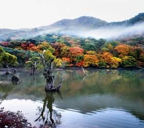 [<!HS>핫<!HE> <!HS>클립<!HE>] 국립공원에서 찾은 '올가을 가장 아름다운 단풍길 5곳'