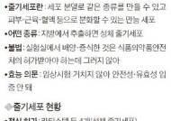 박 대통령 '줄기세포 주사' 맞았다면 허가 안 받은 불법
