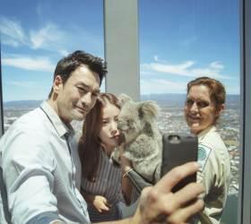 [<!HS>Travel<!HE> Gallery] 셀럽도 반한 호주 퀸즈랜드