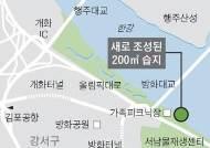 창녕 우포늪 창포·부들…강서한강공원서 만나세요