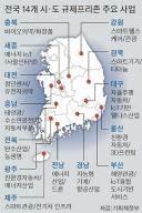 [현장에서] 규제프리존 1년 허송세월…동력 사그라드는 신산업 육성