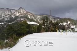 대설경보 내려진 울릉도·독도…15cm 이상 눈 쌓여
