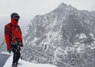 [포토 뉴스] 설국 울릉도...폭설 맞은 동백도 다소곳