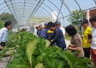 [반퇴시대] 청송 커피농부, 칠곡 버섯농부 … 4050의 꿈 열매 맺는 농민사관학교