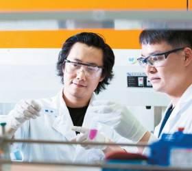 [<!HS>혁신<!HE><!HS>경영<!HE>] 기업 DNA까지 바꿔라! <!HS>미래<!HE> 성장동력 키워드는 '<!HS>혁신<!HE>'