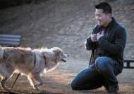 [박정호의 사람 풍경] 개에게 가장 좋은 주인은 백수 … 함께할 시간 많아서죠