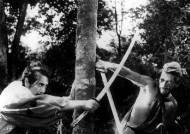 [1951.09.10] 영화 '라쇼몽' 베니스영화제서 대상