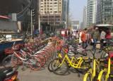 [예영준의 차이 나는 차이나] 이용자 5000만 눈앞 … 베이징 도로 점령한 공유자전거