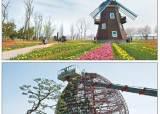 [완도 국제해조류박람회] 느릿느릿 청보리밭 거닐어 볼까, 봄꽃 향기에 취해 나비와 춤출까