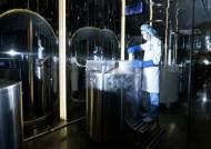 5년 새 18배 … 만혼시대 난자 냉동산업이 뜬다