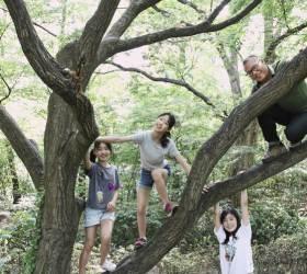 [<!HS>커버<!HE><!HS>스토리<!HE>]나무 타기, 껍질 퍼즐, 솔방울 다트…신나는 숲 놀이공원