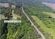 해발 900m '한라산 천연보호구역'에도 재선충