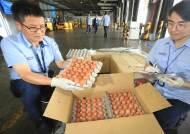 태국산 계란 어디로 갔을까?…들어온다던 200만알 '행방 묘연'