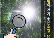 [카드뉴스] 여름에 걷기 좋은 숲길 10곳