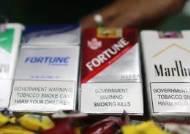 필리핀 두테르테, '공공장소 흡연' 전면금지...여행객 주의