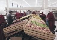 닐슨, 시청률 조사에 유튜브·훌루 합산… 디지털 플랫폼 대폭 수용