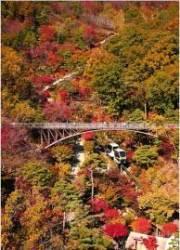 [주말&여기]서울 인근 단풍명소 화담숲…21일부터 단풍 축제