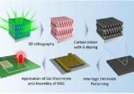 3차 네트워크 탄소전극 합성 기술 개발…웨어러블 장비 응용 가능