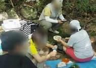 """'꼴불견 국립공원 피서' 1위는? """"캠핑 문화 편승해…"""""""
