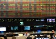 헤알화 뚝뚝, 눈물의 브라질 펀드
