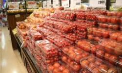 한 달 새 가격 82% 뛴 토마토…41개 수입 농축수산물 값도 올라