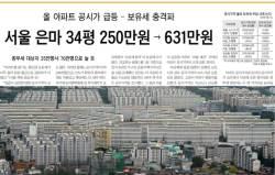 """""""세금 대신 아파트 베라""""···2007 '보유세폭탄' 악몽 재현"""